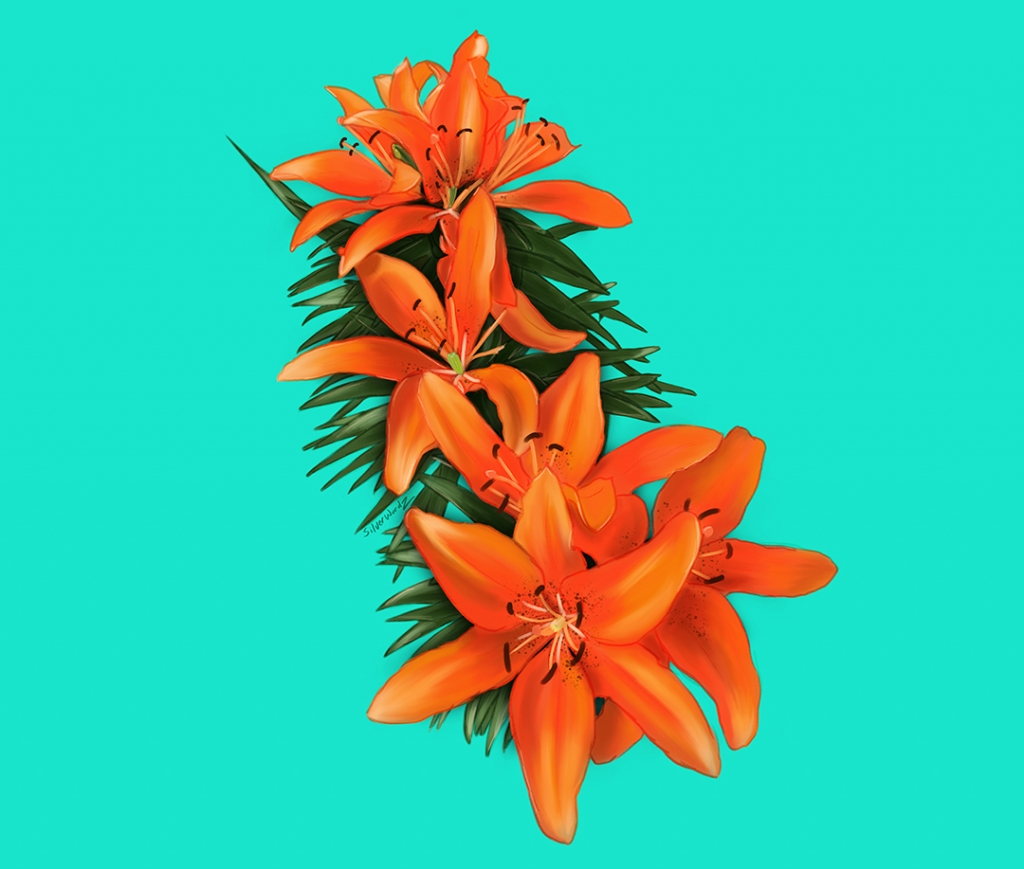 Asian Lily February 13 2019