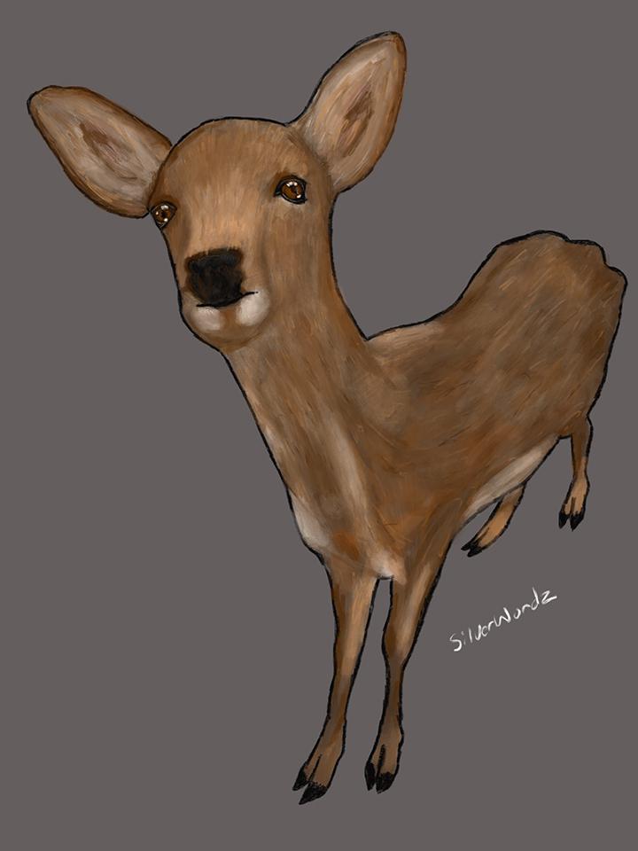 Nara Deer June 5 2018