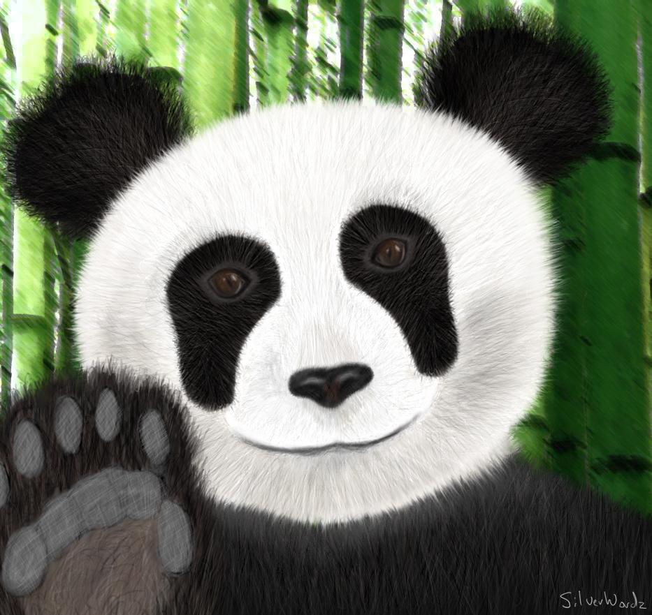 Panda March 26 2010