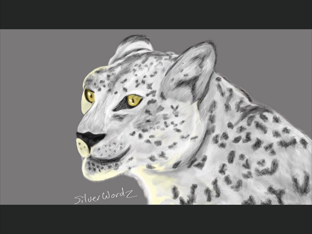Snow Leopard July 7 2013